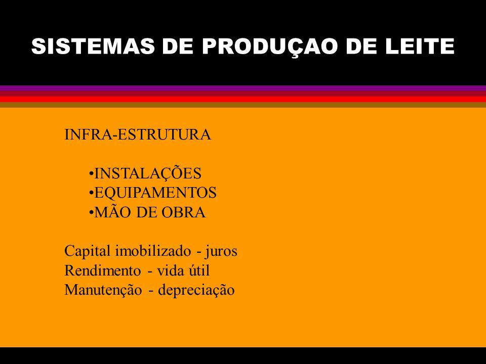 SISTEMAS DE PRODUÇAO DE LEITE INFRA-ESTRUTURA INSTALAÇÕES EQUIPAMENTOS MÃO DE OBRA Capital imobilizado - juros Rendimento - vida útil Manutenção - depreciação