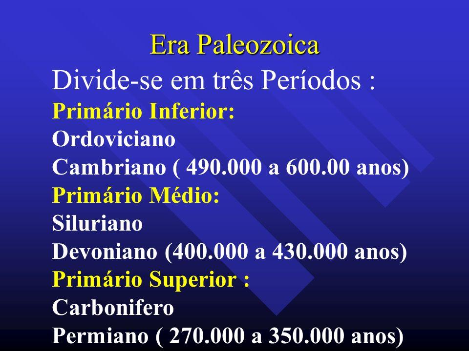 Era Paleozoica Divide-se em três Períodos : Primário Inferior: Ordoviciano Cambriano ( 490.000 a 600.00 anos) Primário Médio: Siluriano Devoniano (400