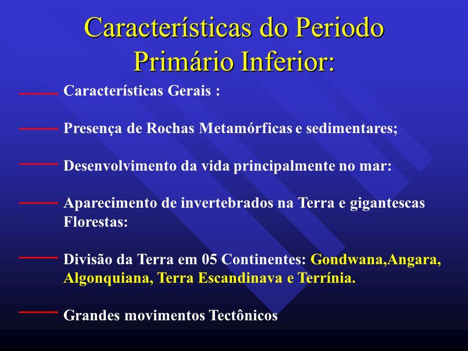 Características do Periodo Primário Inferior: Características Gerais : Presença de Rochas Metamórficas e sedimentares; Desenvolvimento da vida princip