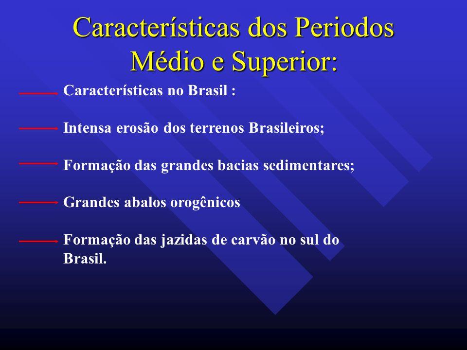Características dos Periodos Médio e Superior: Características no Brasil : Intensa erosão dos terrenos Brasileiros; Formação das grandes bacias sedime