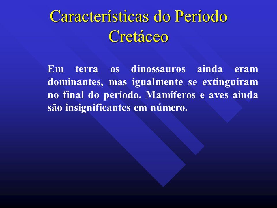 Características do Período Cretáceo Em terra os dinossauros ainda eram dominantes, mas igualmente se extinguiram no final do período. Mamíferos e aves