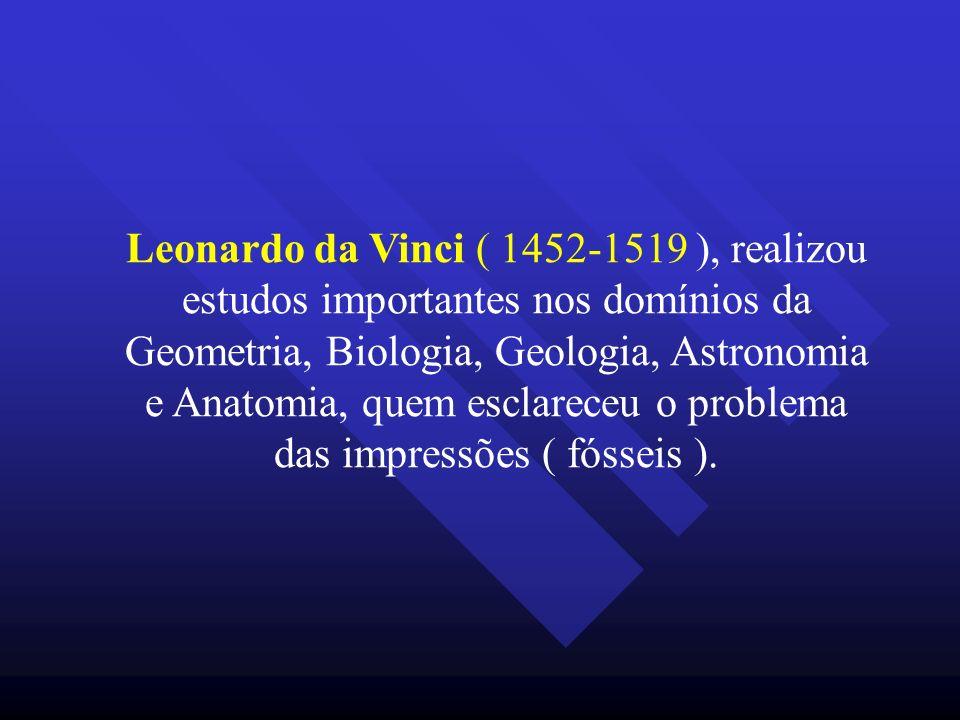 Leonardo da Vinci ( 1452-1519 ), realizou estudos importantes nos domínios da Geometria, Biologia, Geologia, Astronomia e Anatomia, quem esclareceu o