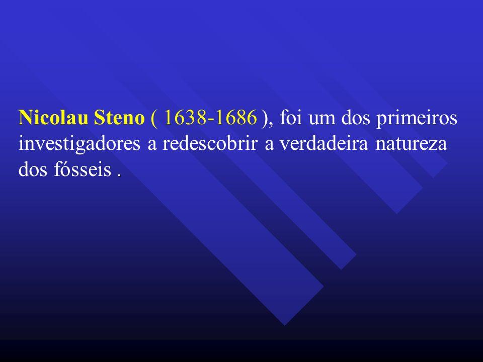. Nicolau Steno ( 1638-1686 ), foi um dos primeiros investigadores a redescobrir a verdadeira natureza dos fósseis.