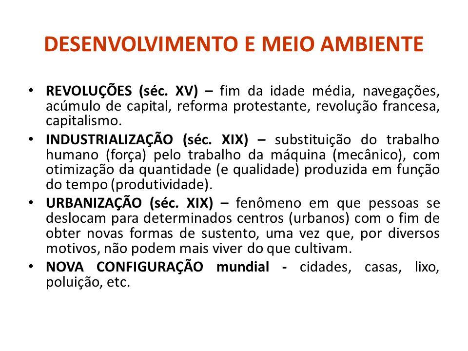 CONSEQUENCIAS DO DESENVOLVIMENTO...