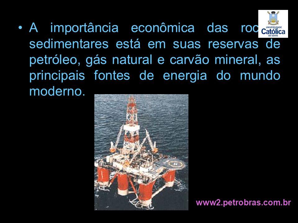 A importância econômica das rochas sedimentares está em suas reservas de petróleo, gás natural e carvão mineral, as principais fontes de energia do mu