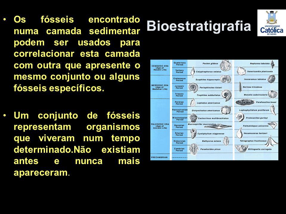 Os fósseis encontrado numa camada sedimentar podem ser usados para correlacionar esta camada com outra que apresente o mesmo conjunto ou alguns fóssei