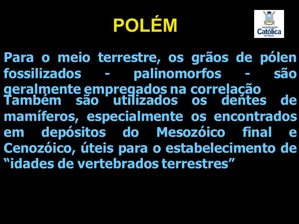 Para o meio terrestre, os grãos de pólen fossilizados - palinomorfos - são geralmente empregados na correlação Também são utilizados os dentes de mamí