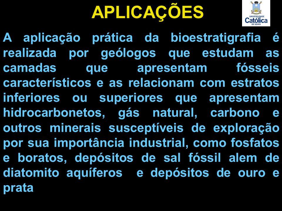 A aplicação prática da bioestratigrafia é realizada por geólogos que estudam as camadas que apresentam fósseis característicos e as relacionam com est