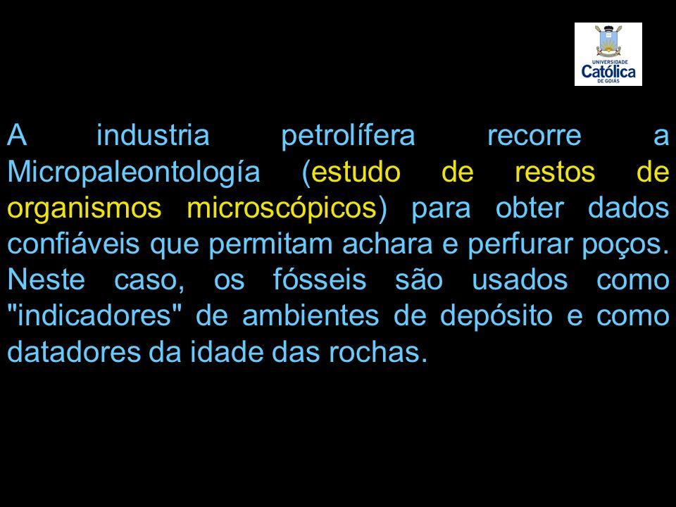 A industria petrolífera recorre a Micropaleontología (estudo de restos de organismos microscópicos) para obter dados confiáveis que permitam achara e