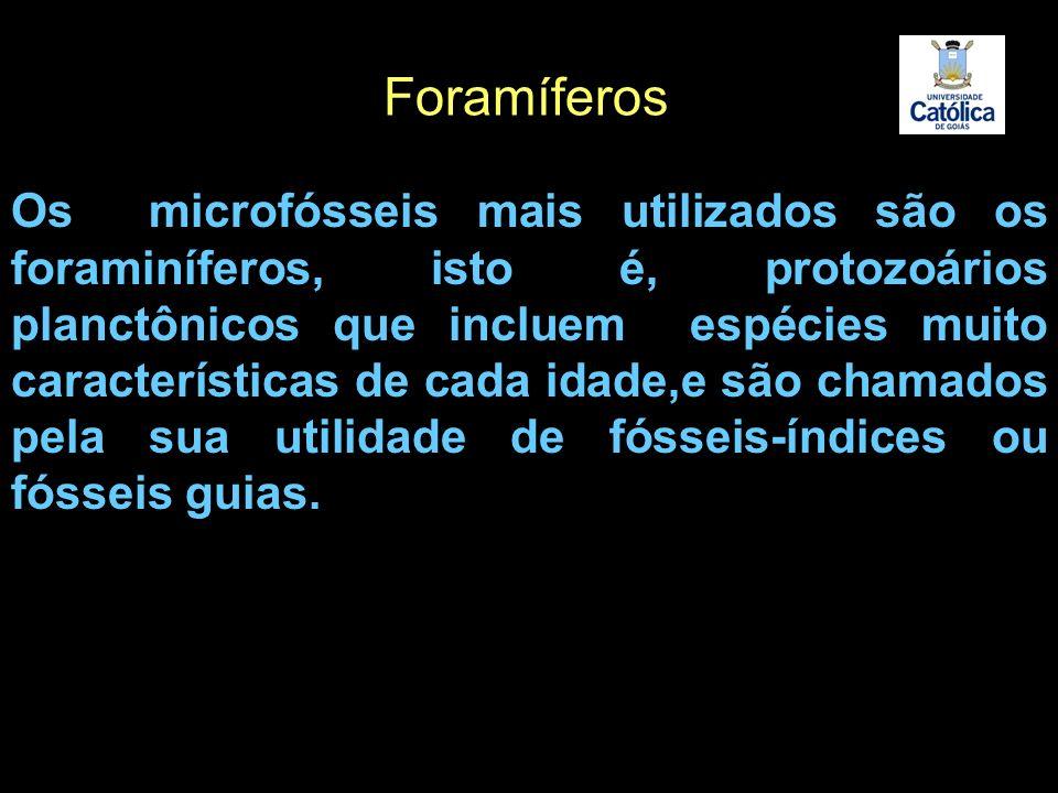Os microfósseis mais utilizados são os foraminíferos, isto é, protozoários planctônicos que incluem espécies muito características de cada idade,e são