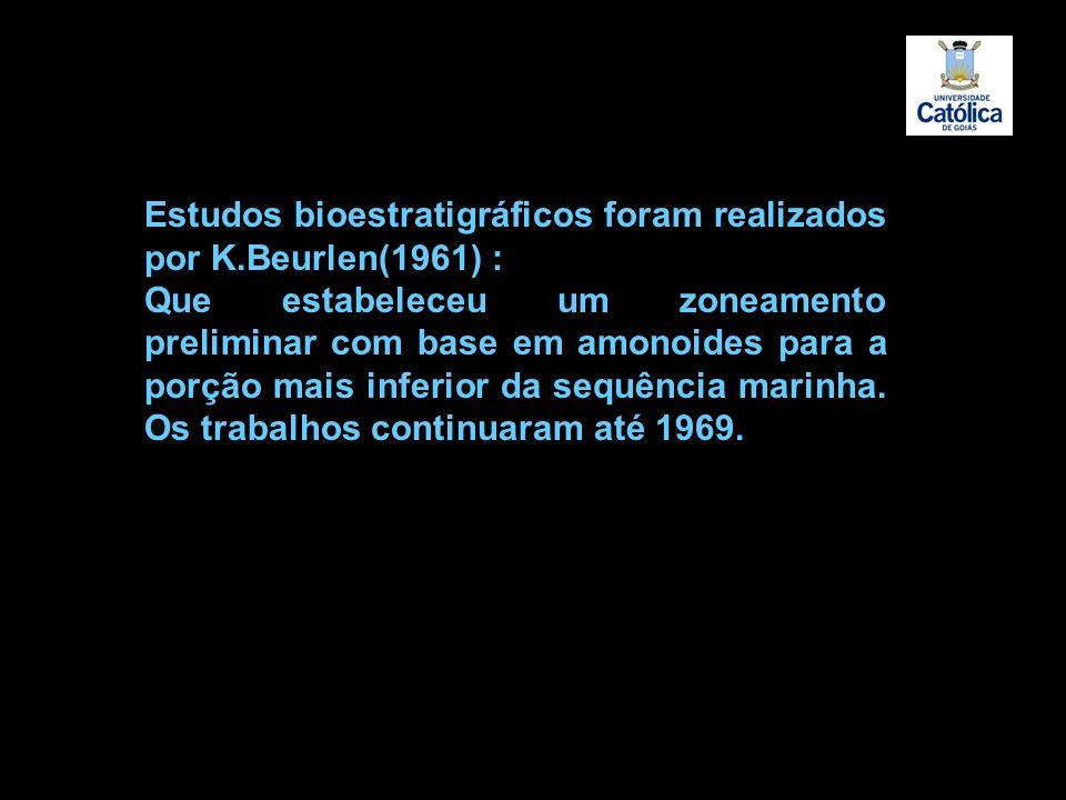 Estudos bioestratigráficos foram realizados por K.Beurlen(1961) : Que estabeleceu um zoneamento preliminar com base em amonoides para a porção mais in