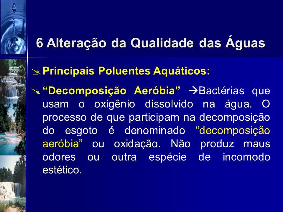 Principais Poluentes Aquáticos: 1)Poluentes Orgânicos Biodegradáveis: matéria orgânica degradada pelos organismos decompositores; Com oxigênio dissolv