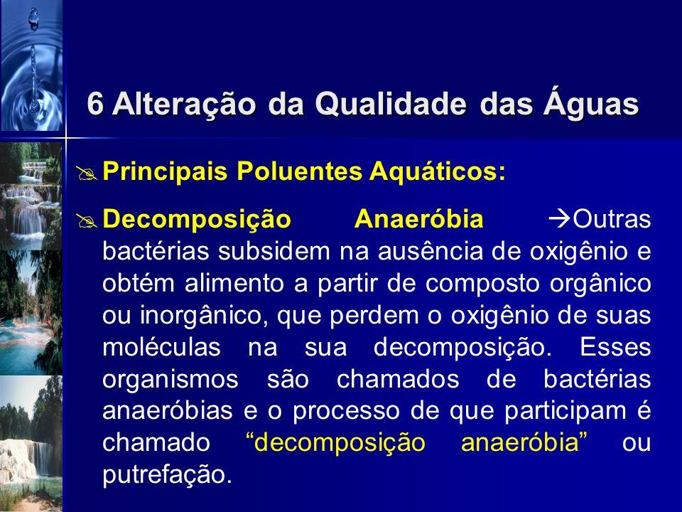 Principais Poluentes Aquáticos: Decomposição Aeróbia Bactérias que usam o oxigênio dissolvido na água. O processo de que participam na decomposição do