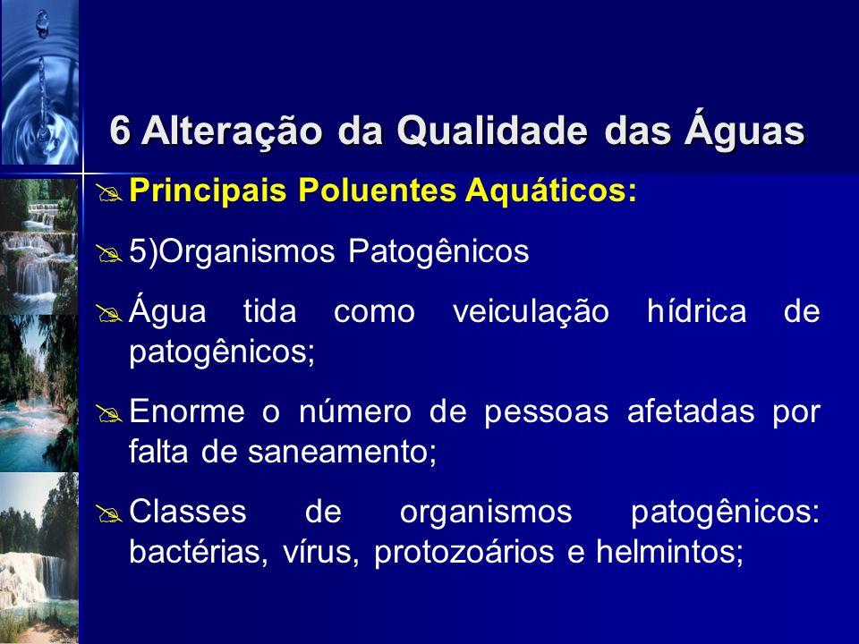 Principais Poluentes Aquáticos: 4)Nutrientes Excesso de nutrientes crescimento excessivo de alguns organismos aquáticos prejuízo a determinados recurs