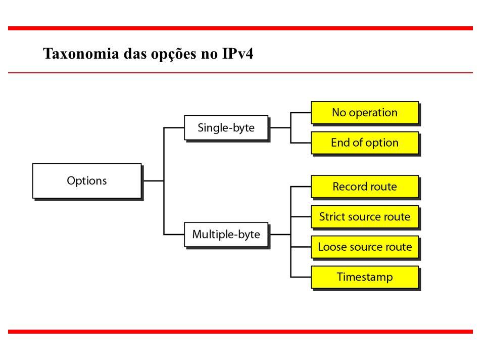 21 Taxonomia das opções no IPv4