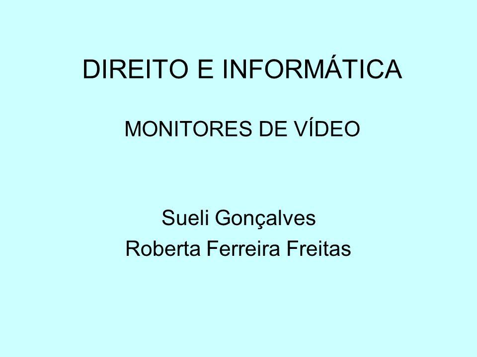 DIREITO E INFORMÁTICA MONITORES DE VÍDEO Sueli Gonçalves Roberta Ferreira Freitas