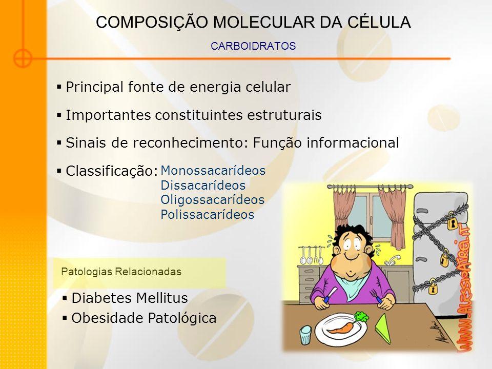 COMPOSIÇÃO MOLECULAR DA CÉLULA CARBOIDRATOS Monossacarídeos Dissacarídeos Oligossacarídeos Polissacarídeos Diabetes Mellitus Obesidade Patológica Prin