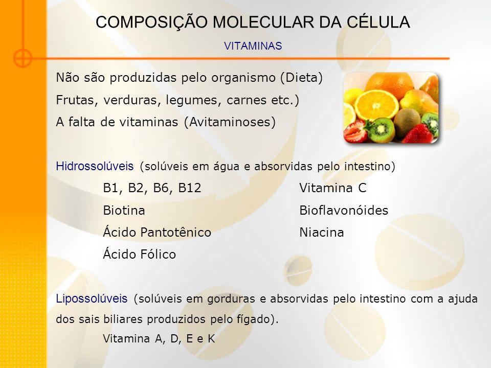 COMPOSIÇÃO MOLECULAR DA CÉLULA VITAMINAS Não são produzidas pelo organismo (Dieta) Frutas, verduras, legumes, carnes etc.) A falta de vitaminas (Avita