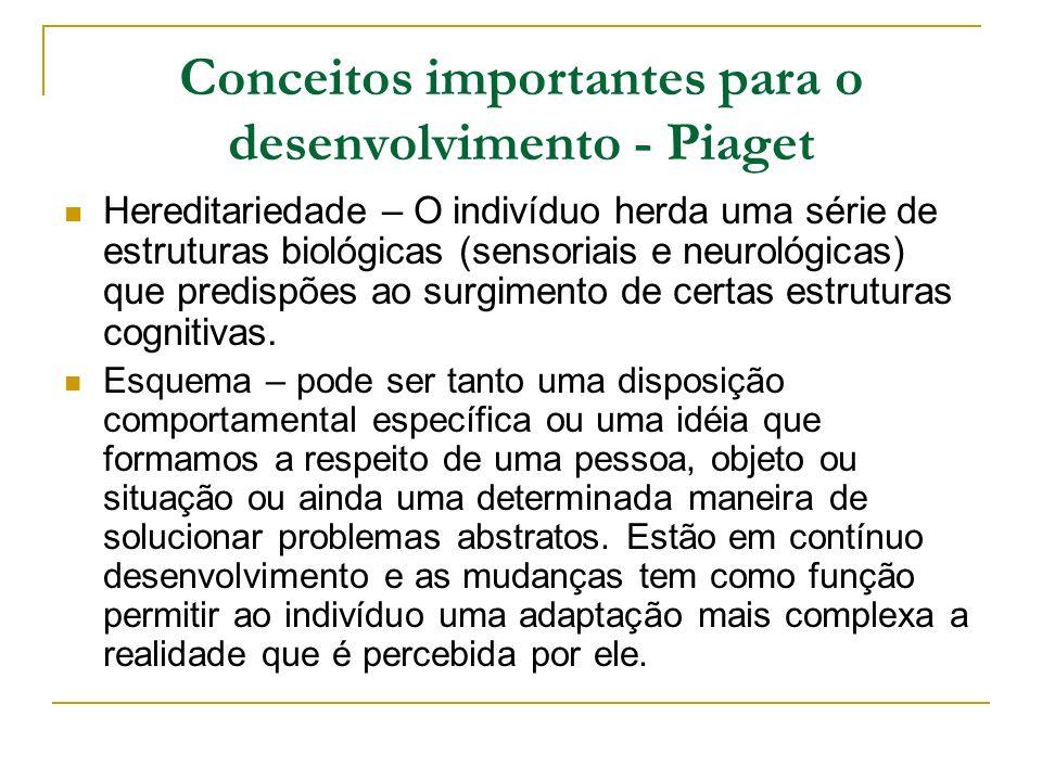 Conceitos importantes para o desenvolvimento - Piaget Hereditariedade – O indivíduo herda uma série de estruturas biológicas (sensoriais e neurológica