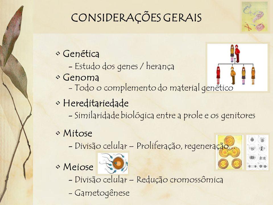 CONSIDERAÇÕES GERAIS Genética - Estudo dos genes / herança Genoma - Todo o complemento do material genético Hereditariedade - Similaridade biológica e