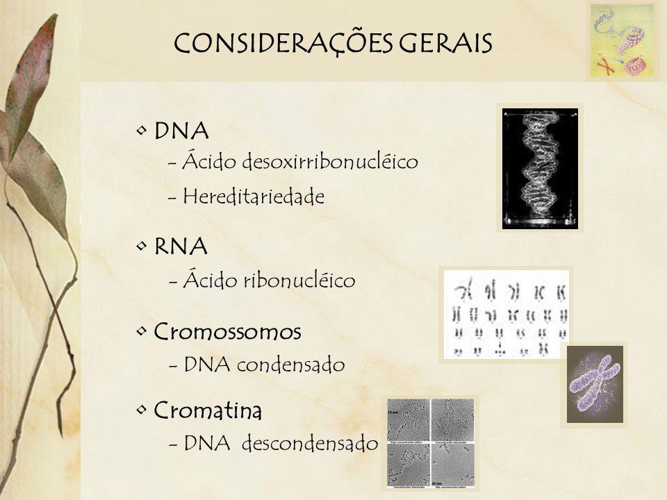 CONSIDERAÇÕES GERAIS DNA RNA - Ácido desoxirribonucléico - Hereditariedade - Ácido ribonucléico Cromossomos - DNA condensado Cromatina - DNA desconden