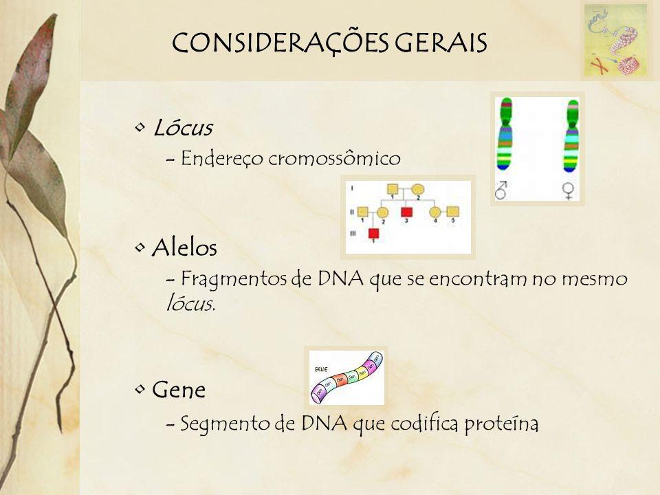 CONSIDERAÇÕES GERAIS Lócus - Endereço cromossômico Alelos - Fragmentos de DNA que se encontram no mesmo lócus. Gene - Segmento de DNA que codifica pro