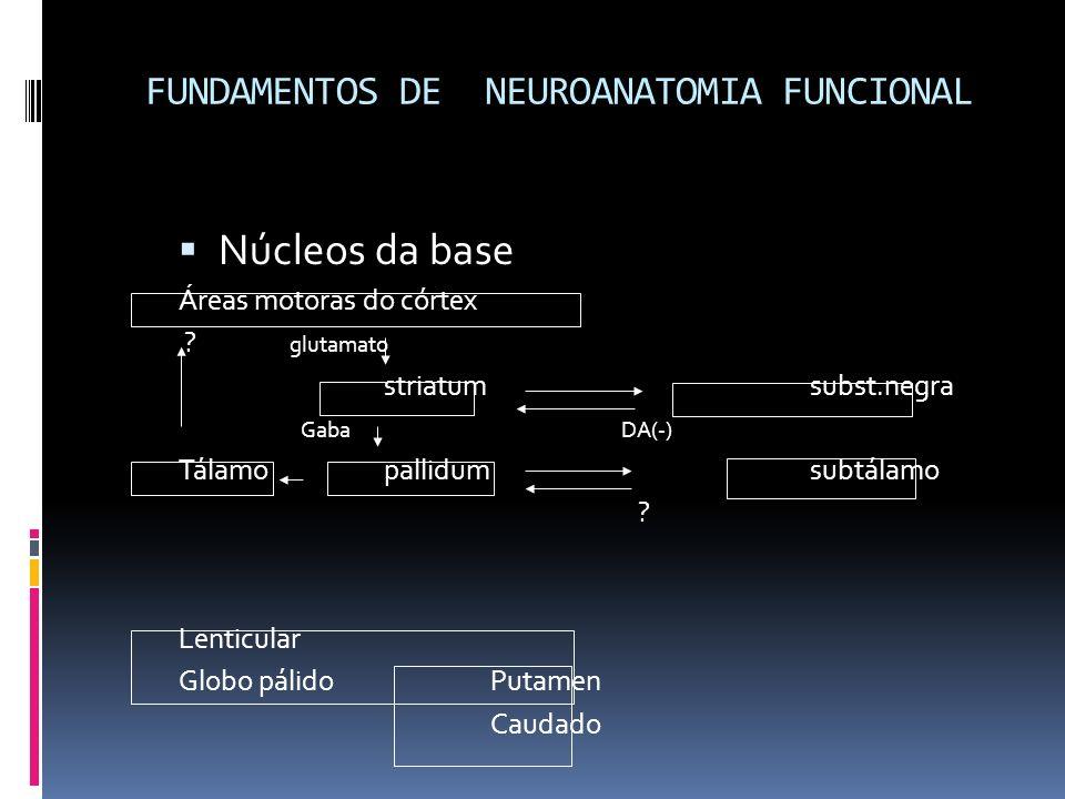 FUNDAMENTOS DE NEUROANATOMIA FUNCIONAL Núcleos da base Áreas motoras do córtex ? glutamato striatumsubst.negra Gaba DA(-) Tálamopallidumsubtálamo ? Le