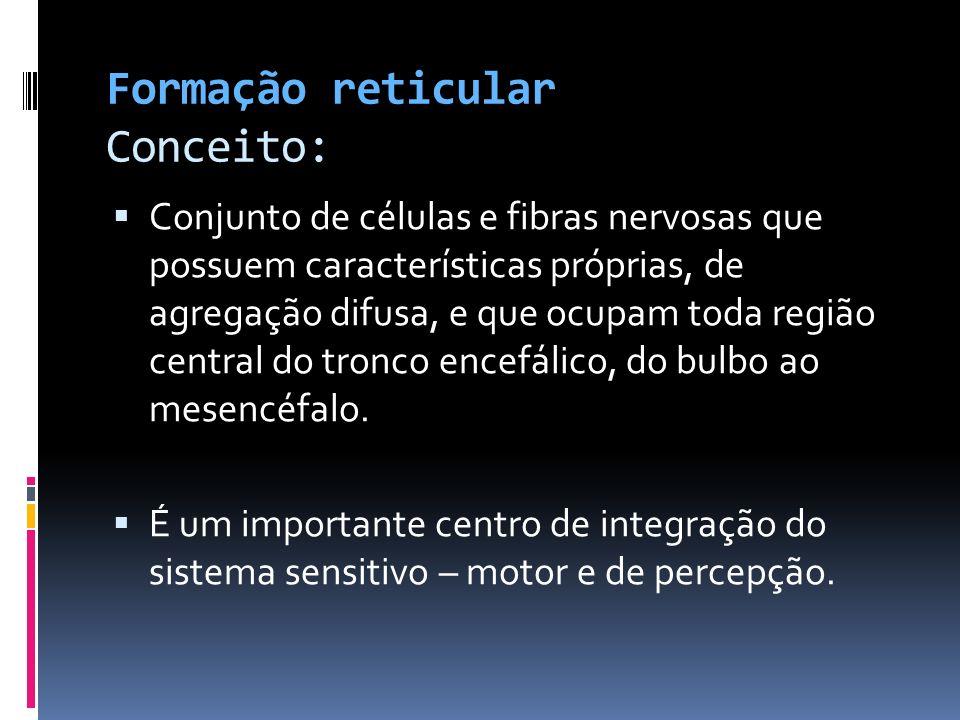 Formação reticular Conceito: Conjunto de células e fibras nervosas que possuem características próprias, de agregação difusa, e que ocupam toda região
