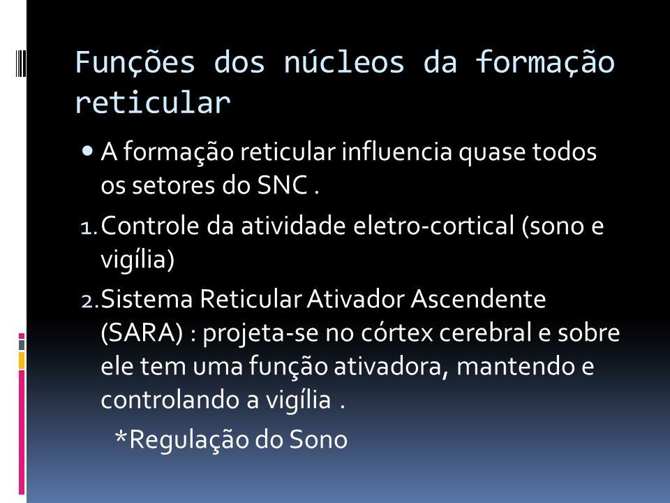 Funções dos núcleos da formação reticular A formação reticular influencia quase todos os setores do SNC. 1. Controle da atividade eletro-cortical (son