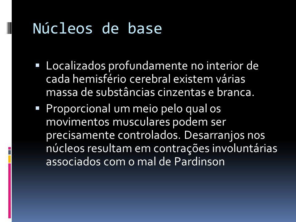 Núcleos de base Localizados profundamente no interior de cada hemisfério cerebral existem várias massa de substâncias cinzentas e branca. Proporcional