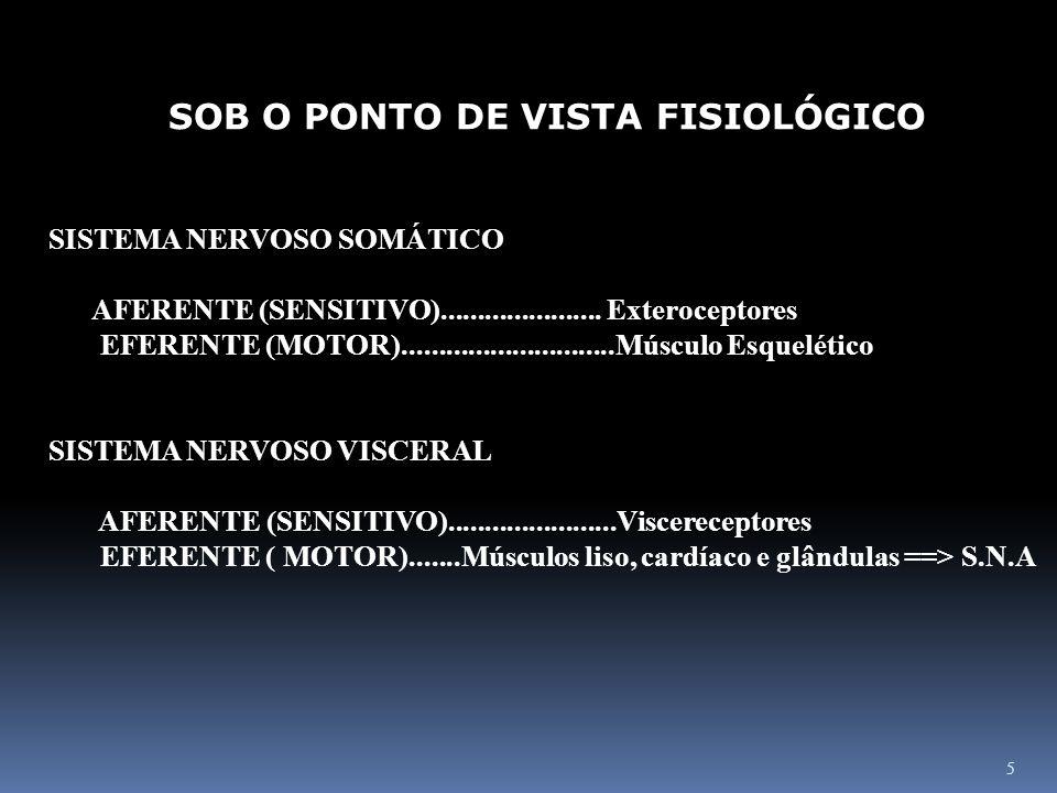 5 SOB O PONTO DE VISTA FISIOLÓGICO SISTEMA NERVOSO SOMÁTICO AFERENTE (SENSITIVO)...................... Exteroceptores EFERENTE (MOTOR)................