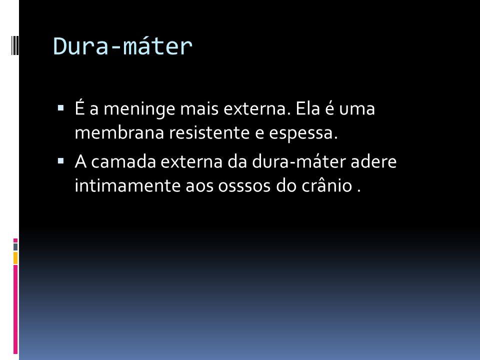Dura-máter É a meninge mais externa. Ela é uma membrana resistente e espessa. A camada externa da dura-máter adere intimamente aos osssos do crânio.