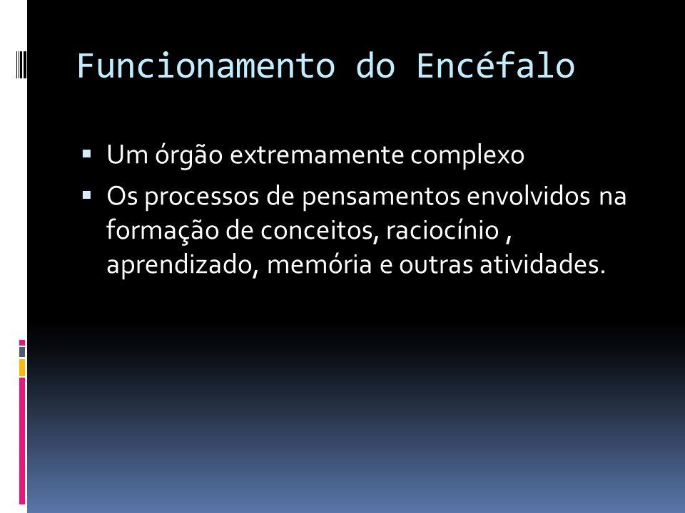 Funcionamento do Encéfalo Um órgão extremamente complexo Os processos de pensamentos envolvidos na formação de conceitos, raciocínio, aprendizado, mem