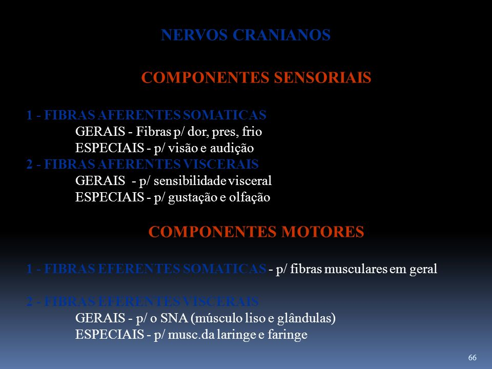 66 COMPONENTES SENSORIAIS 1 - FIBRAS AFERENTES SOMATICAS GERAIS - Fibras p/ dor, pres, frio ESPECIAIS - p/ visão e audição 2 - FIBRAS AFERENTES VISCER