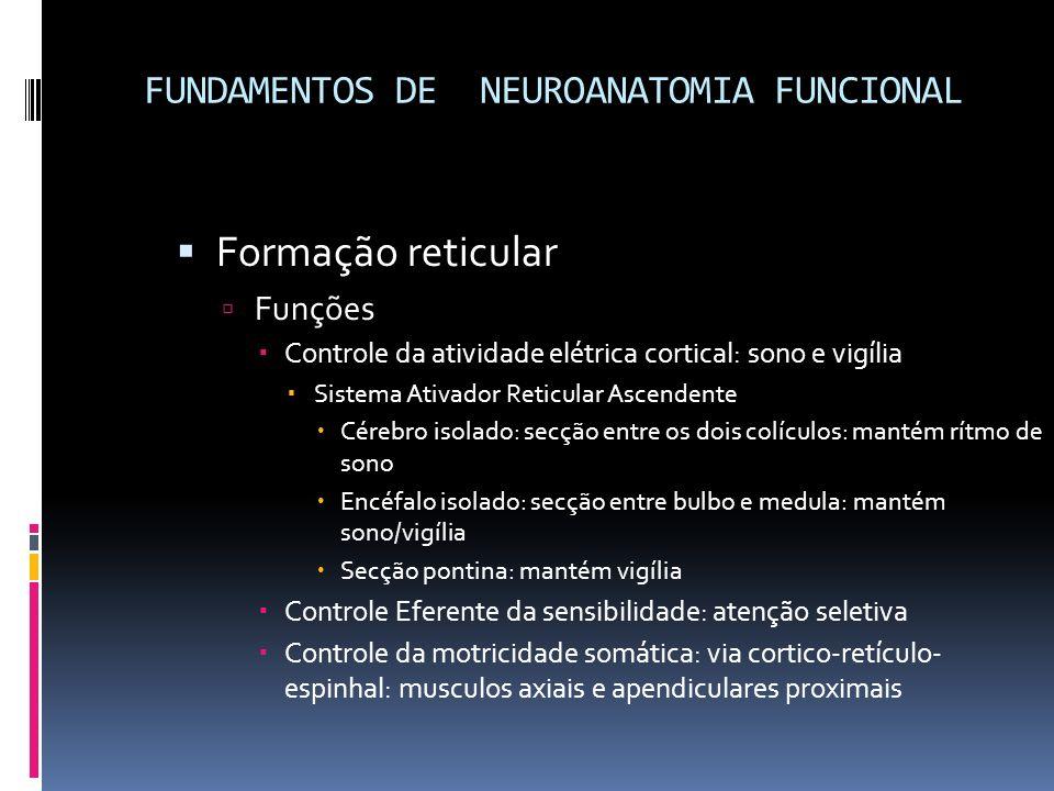 FUNDAMENTOS DE NEUROANATOMIA FUNCIONAL Formação reticular Funções Controle da atividade elétrica cortical: sono e vigília Sistema Ativador Reticular A