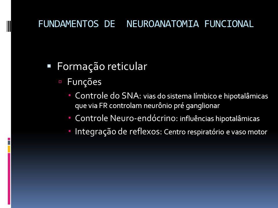 FUNDAMENTOS DE NEUROANATOMIA FUNCIONAL Formação reticular Funções Controle do SNA: vias do sistema límbico e hipotalâmicas que via FR controlam neurôn