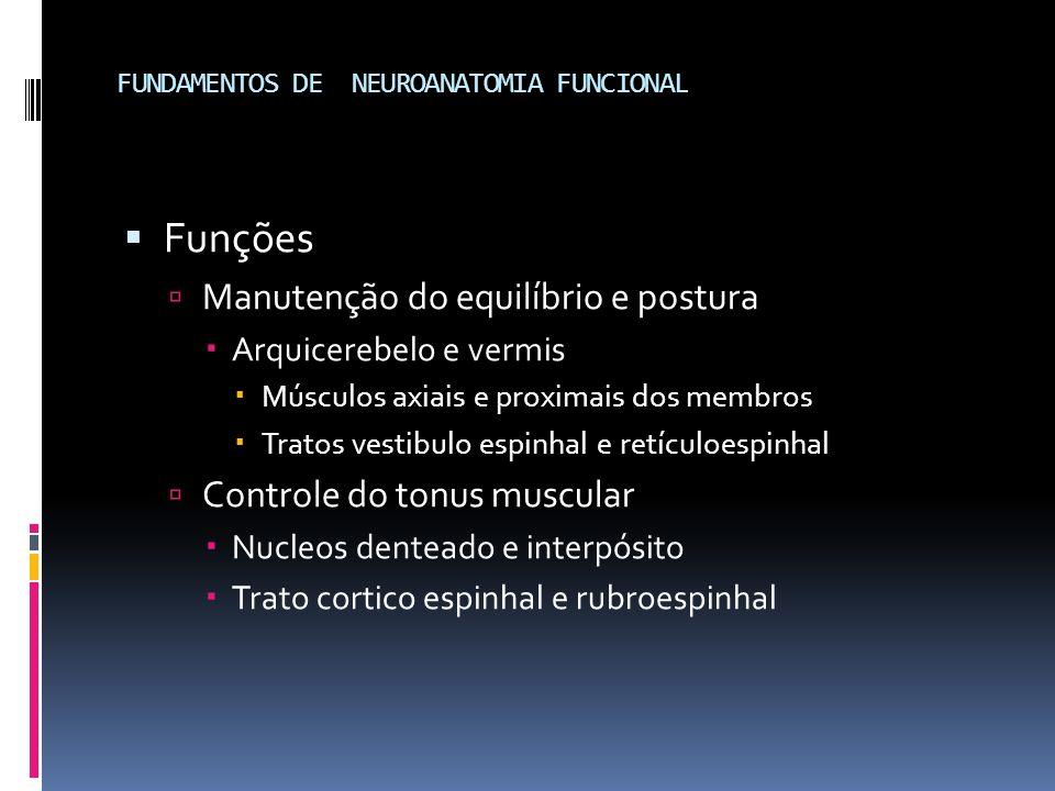 Funções Manutenção do equilíbrio e postura Arquicerebelo e vermis Músculos axiais e proximais dos membros Tratos vestibulo espinhal e retículoespinhal