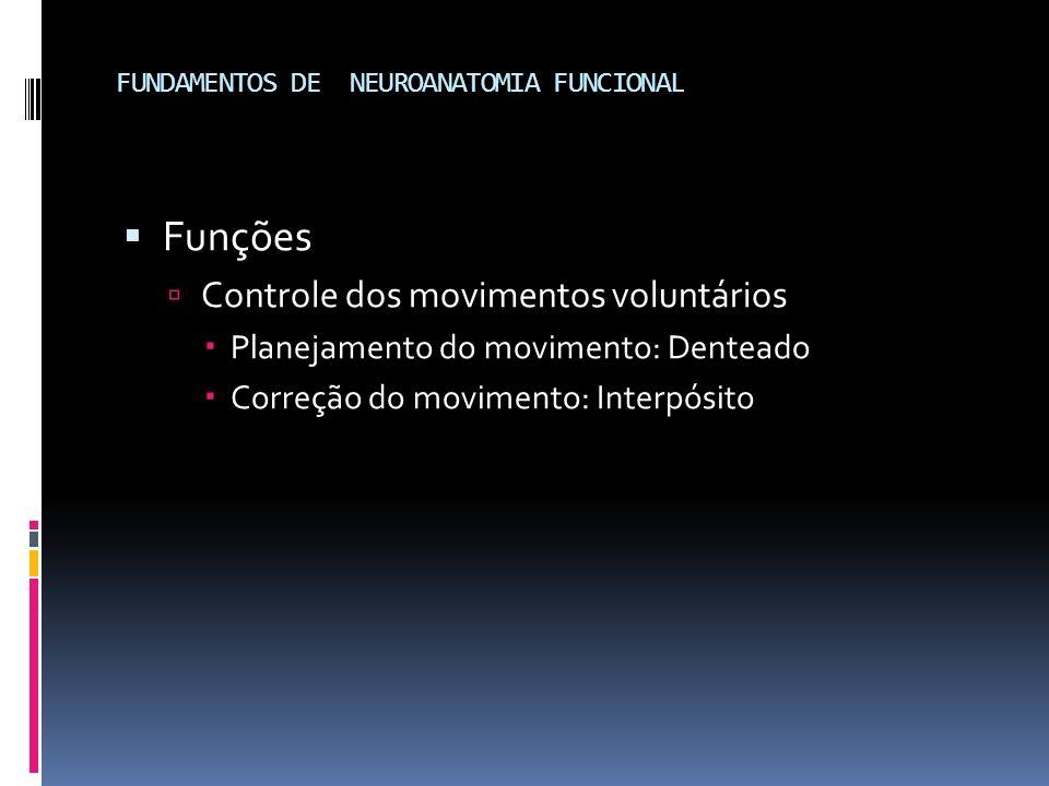 FUNDAMENTOS DE NEUROANATOMIA FUNCIONAL Funções Controle dos movimentos voluntários Planejamento do movimento: Denteado Correção do movimento: Interpós