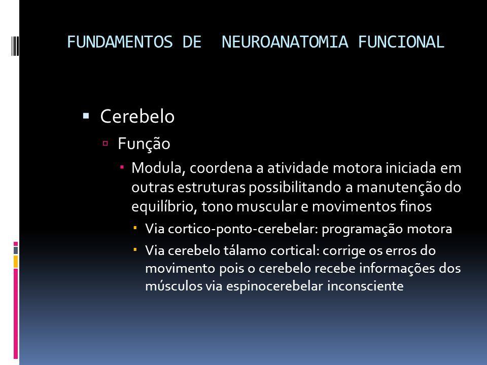 FUNDAMENTOS DE NEUROANATOMIA FUNCIONAL Cerebelo Função Modula, coordena a atividade motora iniciada em outras estruturas possibilitando a manutenção d