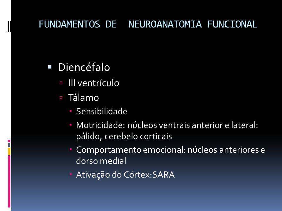 FUNDAMENTOS DE NEUROANATOMIA FUNCIONAL Diencéfalo III ventrículo Tálamo Sensibilidade Motricidade: núcleos ventrais anterior e lateral: pálido, cerebe