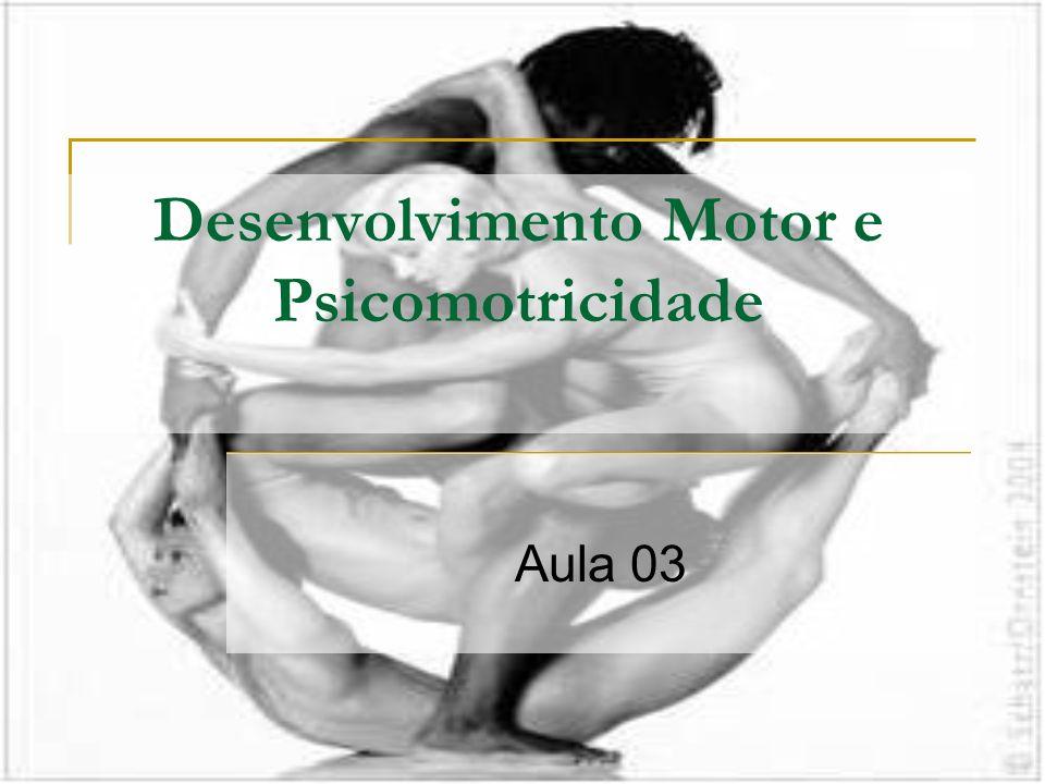 Desenvolvimento Motor e Psicomotricidade Aula 03