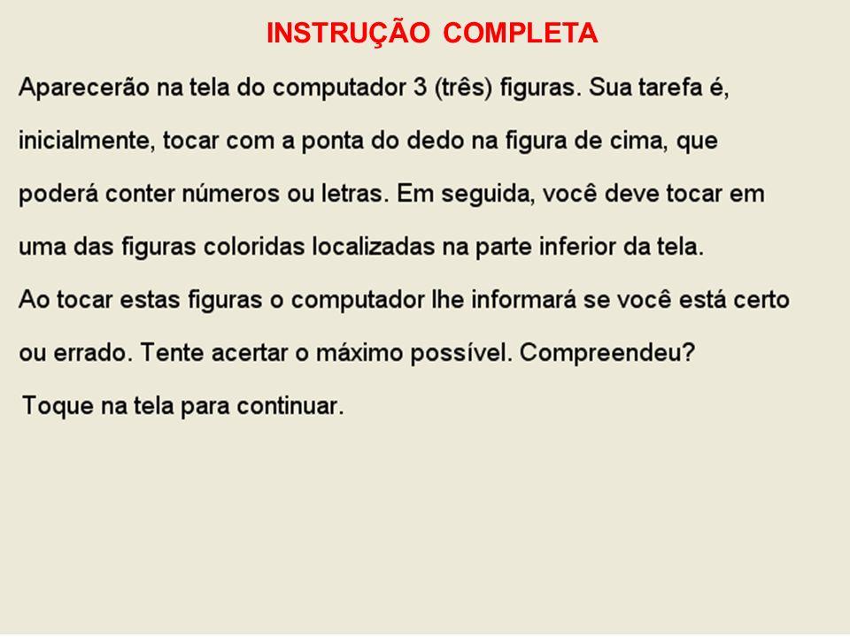 INSTRUÇÃO COMPLETA