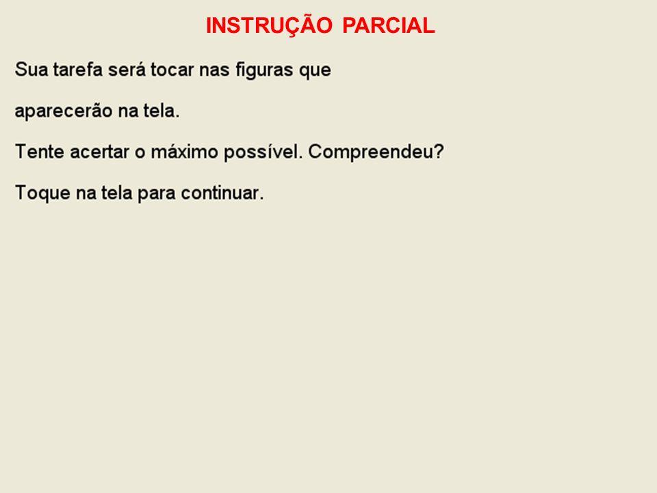 INSTRUÇÃO PARCIAL