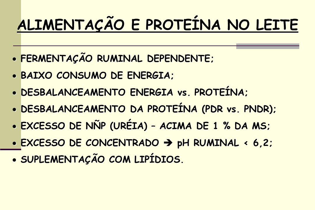 FERMENTAÇÃO RUMINAL DEPENDENTE; FERMENTAÇÃO RUMINAL DEPENDENTE; BAIXO CONSUMO DE ENERGIA; BAIXO CONSUMO DE ENERGIA; DESBALANCEAMENTO ENERGIA vs. PROTE