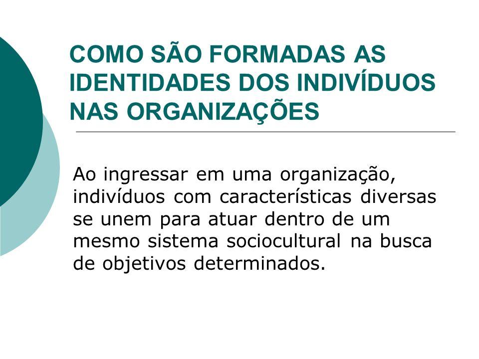 Cultura Organizacional e Identidade dos Indivíduos A cultura de uma organização pode ser aprendida em vários níveis, são eles: 1.