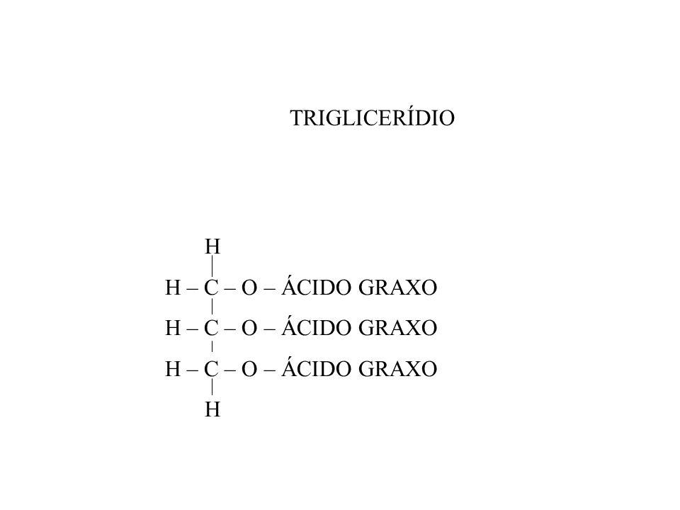 TRIGLICERÍDIO H H – C – O – ÁCIDO GRAXO H