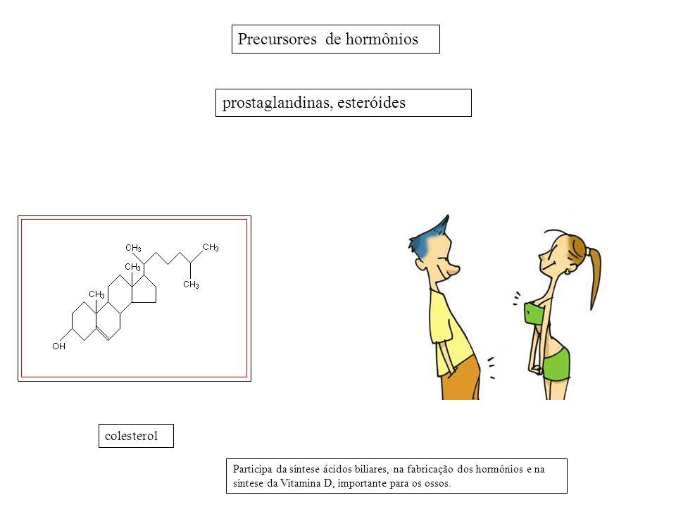 Precursores de hormônios prostaglandinas, esteróides colesterol Participa da síntese ácidos biliares, na fabricação dos hormônios e na síntese da Vita