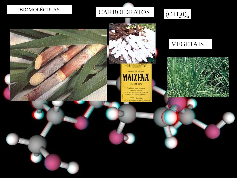 BIOMOLÉCULAS CARBOIDRATOS (C H 2 0) n VEGETAIS