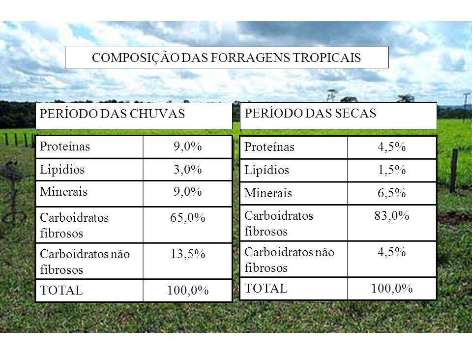 COMPOSIÇÃO DAS FORRAGENS TROPICAIS PERÍODO DAS CHUVAS PERÍODO DAS SECAS Proteínas9,0% Lipidios3,0% Minerais9,0% Carboidratos fibrosos 65,0% Carboidrat