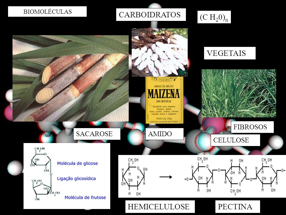 BIOMOLÉCULAS CARBOIDRATOS SACAROSE (C H 2 0) n AMIDO CELULOSE VEGETAIS FIBROSOS HEMICELULOSEPECTINA